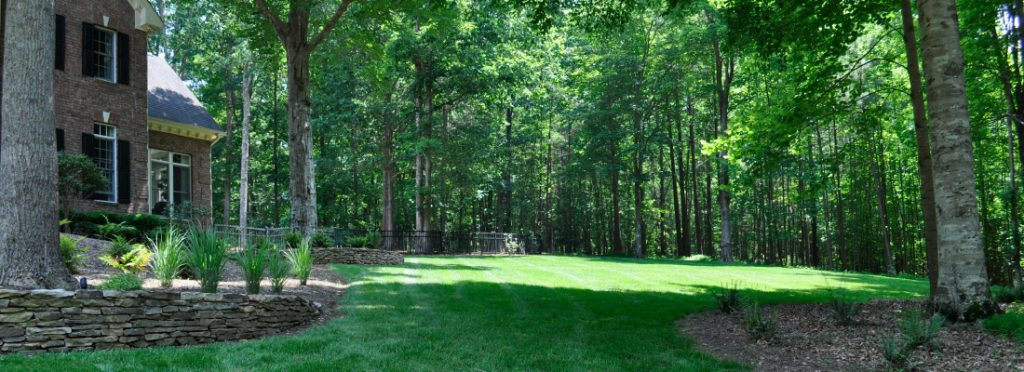 Landscape and lawn drainage solutions for Raleigh Durham homeowners.
