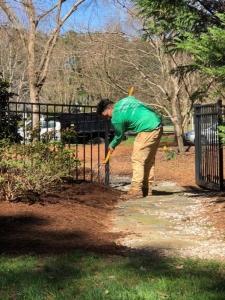 Spreading mulch.