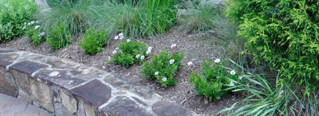 Flower Beds near Raleigh Durham NC from Agape Lawn Co